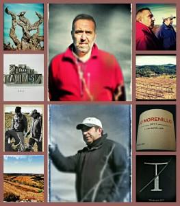 collage vins del tros
